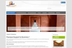 Support To Business